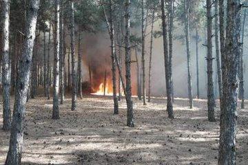 Extreme level of fire hazard declared in Ukraine on Sept 22-25