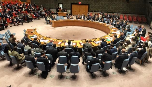 Франція ініціює екстрене засідання Радбезу ООН через турецькі війська в Сирії