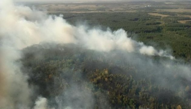 Лісову пожежу на Харківщині ліквідували, але хвойна підстилка ще горить