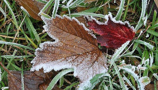 На вихідних обіцяють до 4° морозу