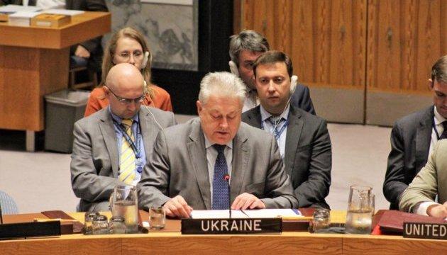 Єльченко в РБ ООН: Причетні до катастрофи МН17 обов'язково будуть покарані