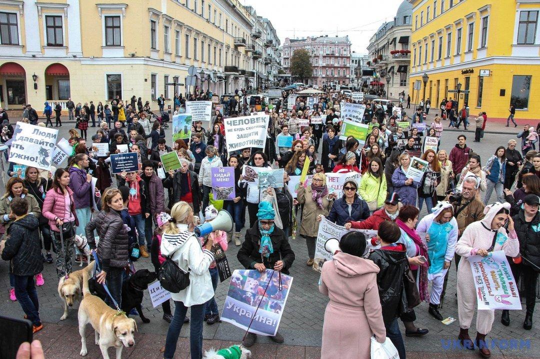 В Івано-Франківську провели марш заправа тварин