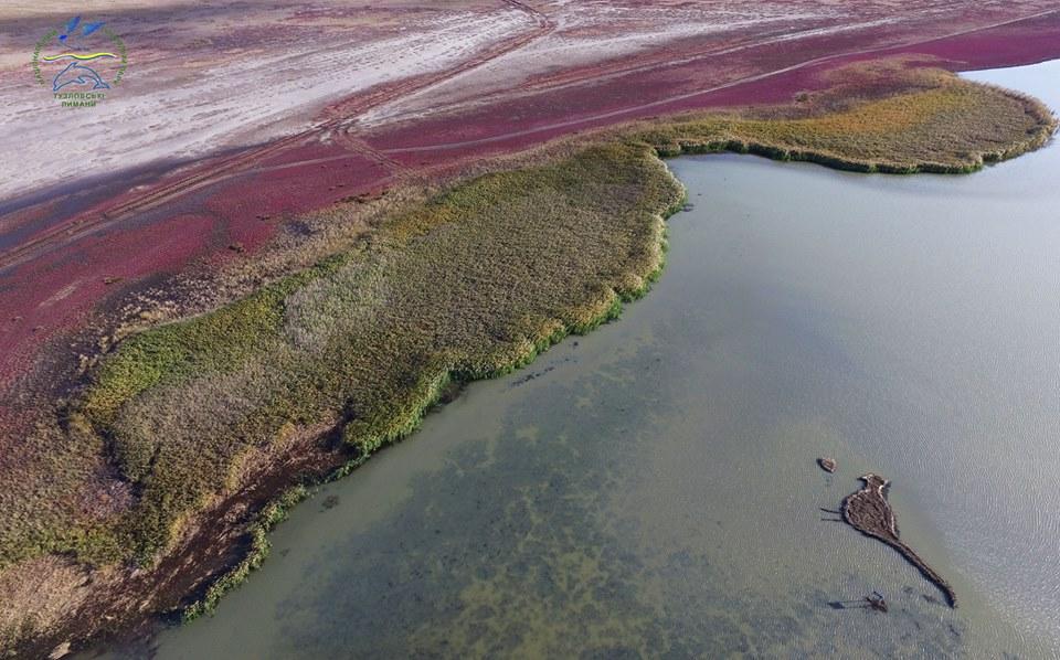 Налимане вОдесской области появился остров вформе фазанки
