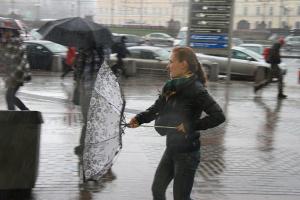 У столиці очікується сильний вітер — киянам радять триматися подалі від дерев