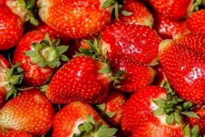 First strawberry festival to be held in Zhytomyr region