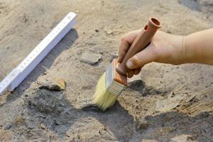 У Китаї знайшли кістки динозавра, який жив 200 мільйонів років тому