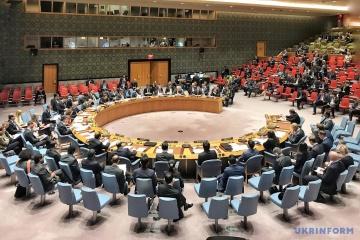El Consejo de Seguridad de la ONU bloquea la reunión sobre la ley sobre el idioma ucraniano