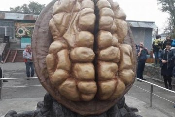 Three-meter-high monument to walnut erected in Dnipropetrovsk region. Photo