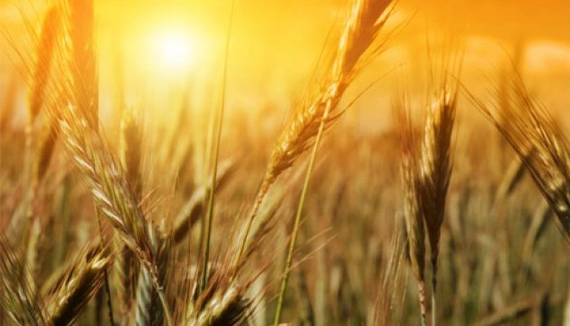 Iran takes interest in Ukrainian agriculture