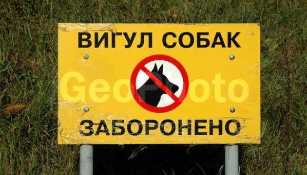 Киянам заборонили вигул собак на території шкіл і лікарень