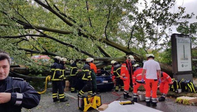 У Німеччині ураган повалив дерево на автомобіль, водій загинув