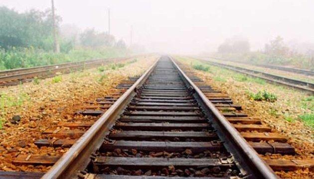 Поваленные деревья остановили поезда на Львовщине