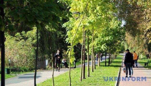 В Тернополе отныне можно пройтись по длиннейшей аллее катальп