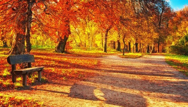 Погода на 19 жовтня: Осіння