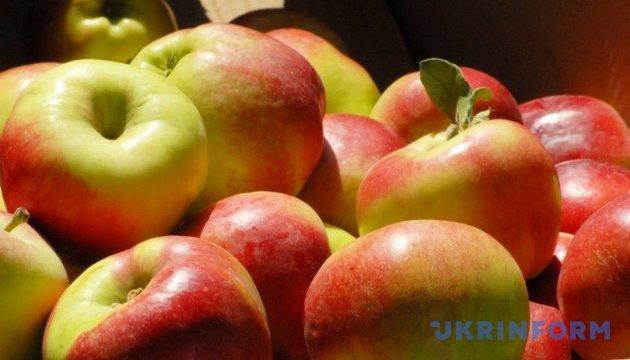 Бар на Виннитчине станет яблочным