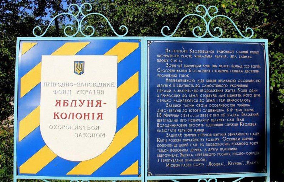 Фото: mirchudes.net
