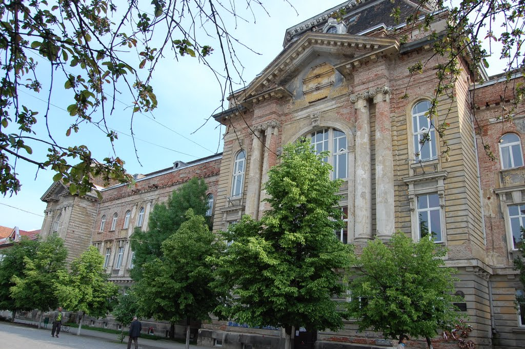 Закарпатський угорський інститут ім.Ференца Ракоці II (м.Берегово)