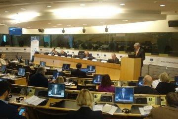 Rede der Ehefrau von Roman Suschtschenko auf dem Forum in Brüssel
