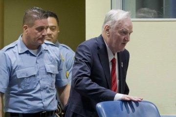 Zerkal: Sentencia a Mladić demuestra que habrá un castigo por los crímenes en el Donbás y Crimea