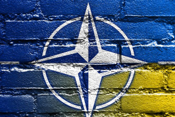 NATO's 'aspirant' status does not guarantee Ukraine's membership - expert