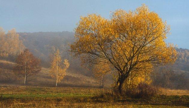 7 листопада: народний календар і астровісник