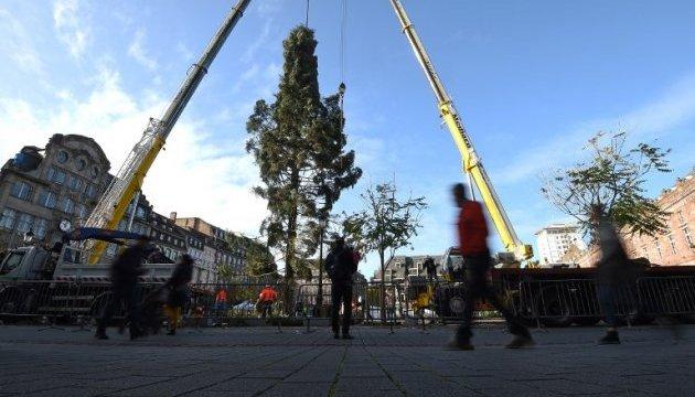 Різдвяна ялинка у Страсбурзі тріснула - встановлять нову