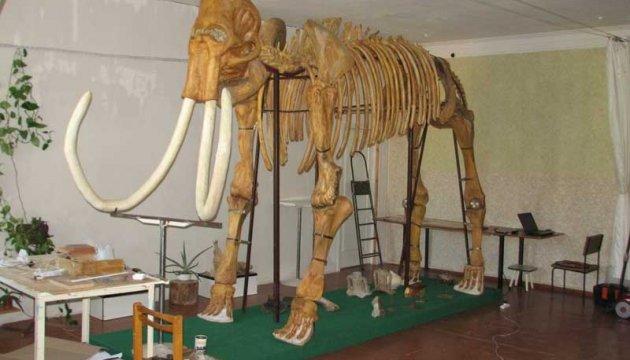 Житель Краматорска передал в музей мамонта