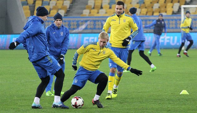 Футбольна збірна Україні випробувала газон стадіону