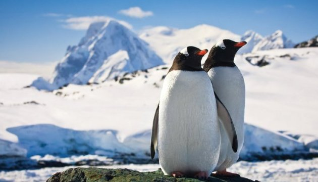 Ukraine, France sign agreement on joint Antarctic researches