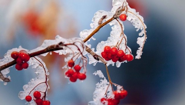 Ukrainian weather forecasters warn of severe frost this week