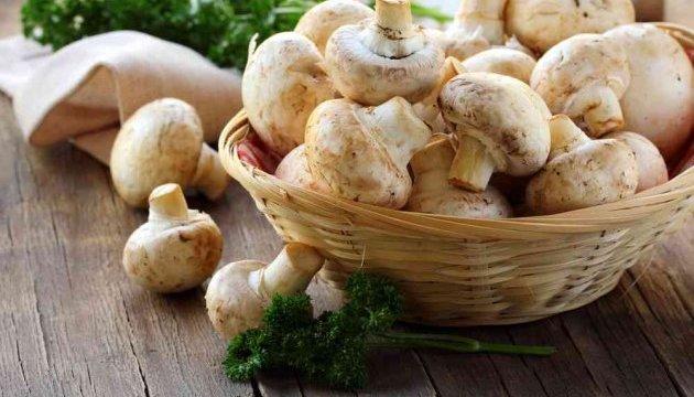 Французы нашли радиоактивный цезий во ввезенных из России грибах