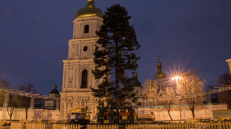 Ось таку облисілу ялинку привезли на Софійську площу в Києві