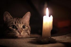 У центрі Києва — масове відключення світла через аварію