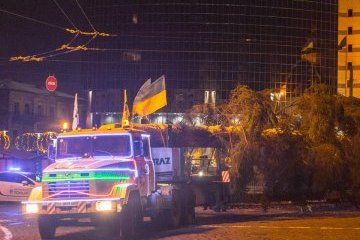 El principal árbol de Navidad llega a Kyiv (Fotos)