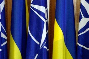 Representante de la OTAN: Los objetos estratégicos de Ucrania están protegidos no peor de los nuestros