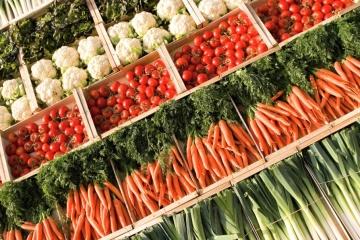 Ukrainische Landwirtschaft wieder auf Wachstumskurs