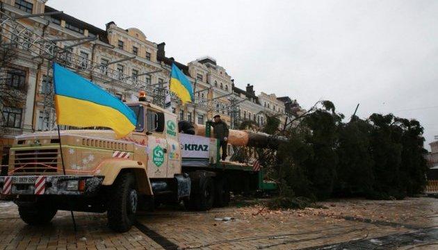 У Києві встановлюють головну ялинку країни
