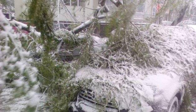 Снігопади в Молдові:: троє загиблих, 30 постраждалих