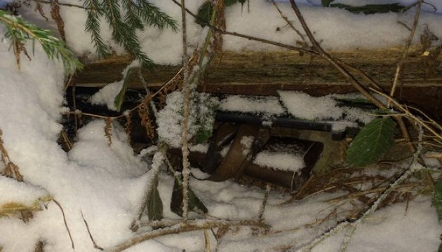 На Черкащині браконьєри застрелили трьох оленів і травмували копа