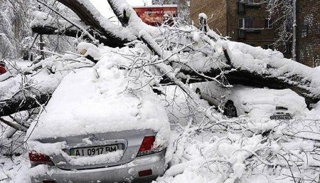 Ураган на Львовщине сорвал крыши, повалил деревья и побил машины