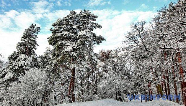 Відеоуроки «Elifbe». Зимовий одяг та взуття