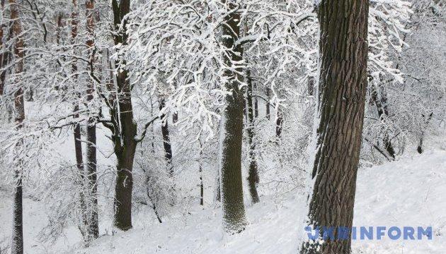 Україну в середу засипле снігом, вітер – до 20 м/с