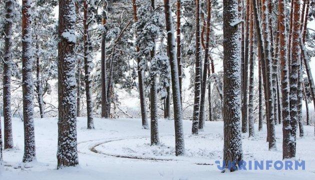 Синоптики обещают до 20° мороза в четверг
