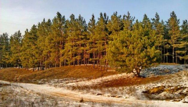 На Херсонщине для защиты лесов на песках создадут региональный ландшафтный парк