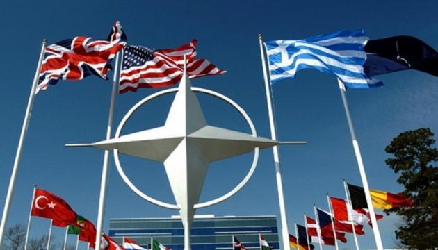 ПА НАТО: Енергетична безпека - ключове занепокоєння Альянсу