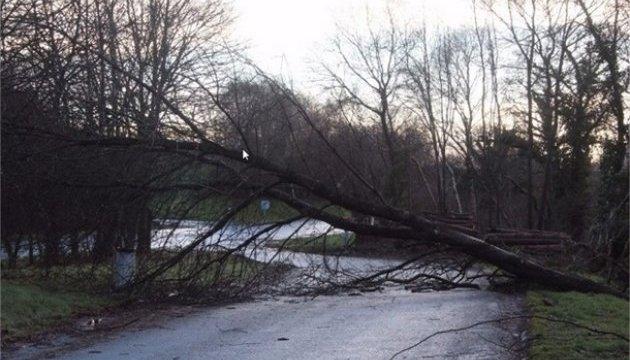 Через шторм «Елеонора» у Франції 200 тисяч сімей залишилися без світла
