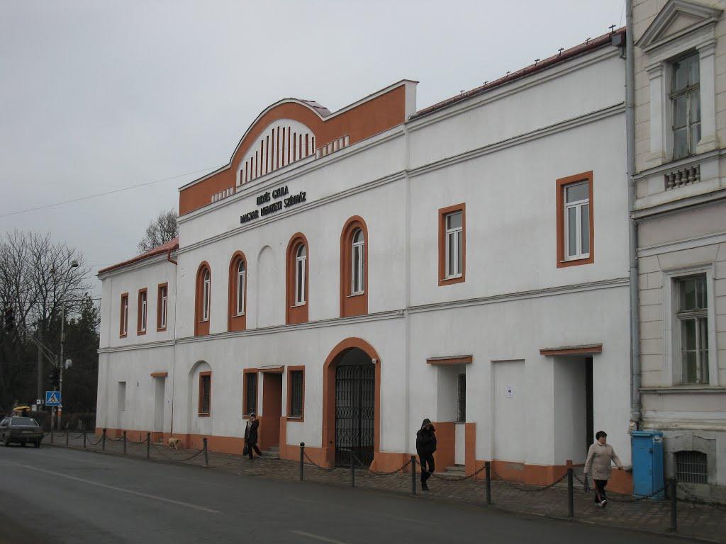 Берегівський угорський театр // Фото: panoramio.com