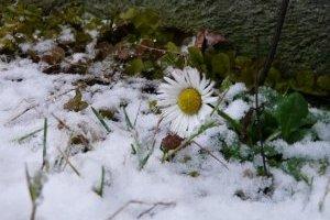 Зима на Дніпропетровщині тривала лише шість днів - метеоролог