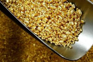 В Індії віднайшли золоте джерело, що уп'ятеро перевищує наявні запаси країни