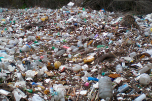 Львовский мусор до сих пор свозят на свалки под Киевом
